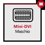 mini DVI Maschio